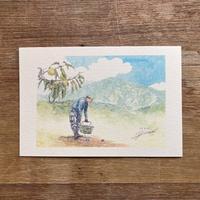 坂下、栗を守る森さんと恵那山