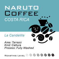 Costarica La Candelilla Fully Washed / 100g