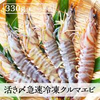 送料無料 活き〆急速冷凍クルマエビ大|鳴門産 250g( 約6〜10尾)