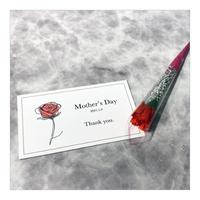 【母の日限定】ミニカーネーション&限定メッセージカード