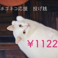 1122円 ホゴネコ応援投げ銭イイにゃんにゃん