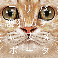 月々562円からの猫助け!ネコリパファンクラブ562円 ごろにゃん