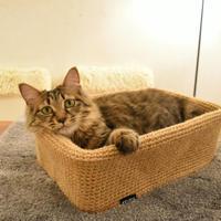 麻の猫ボックス【ナチュラルリネン】