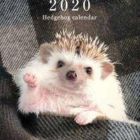 ハリめくり 2020