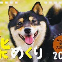 柴めくり2021