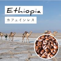 エチオピア シダモ / 200g(カフェインレス・デカフェ)