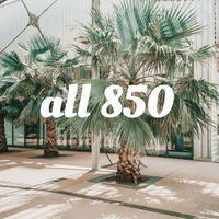 all850
