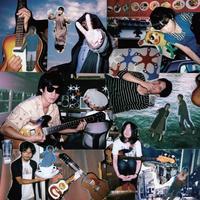 ラッキーオールドサン/旅するギター(LP)
