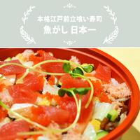 魚がし日本一/バラチラシ
