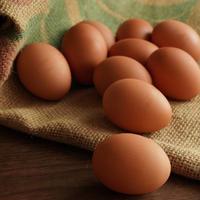 産直卵こがね/10個