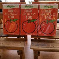 国産ふじりんご100(3個セット)