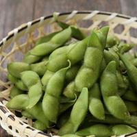 有機栽培だだちゃ豆