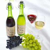 果汁発酵生ワインセット
