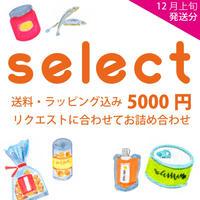 【11月末まで早割】おまかせギフト5000円