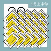 【1月分予約】仁連宿ほしいも20袋(300g×20=6㎏)