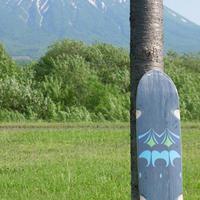 DOWNCHILL Skate Deck < E2 > Limited color BLACK