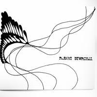 NISEKO DOWNCHILL DVD