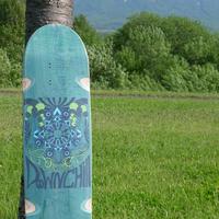 DOWNCHILL Skate Deck < E4 > Limited color GREEN