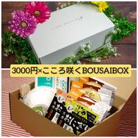 【超お得送料】3000円コースとこころ咲くBOUSAIBOX