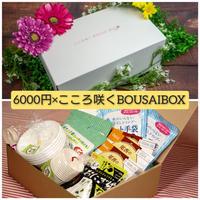 【超お得送料】6000円コースとこころ咲くBOUSAIBOX