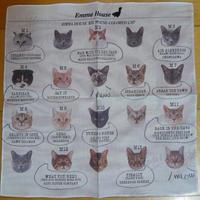 EMMA HOUSE XIX MOUSE-COLORED CAT ハンカチ