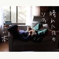 晴れた日のソファーで読みたい本