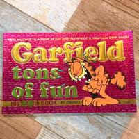 Garfield Comic 29