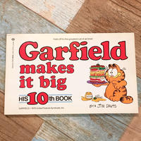 Garfield Comic 10