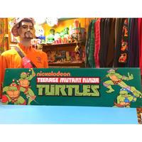 Turtles Nickelodeon Board