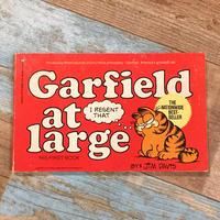 Garfield Comic 1