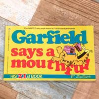 Garfield Comic 21