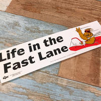 ALF Bumper Sticker C