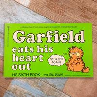 Garfield Comic 6