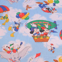 Disney Sheet Sky