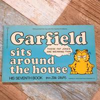 Garfield Comic 7