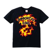 ■丸藤正道Tシャツ