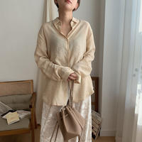 ✳︎予約販売✳︎sheer soft blouse_nt0276