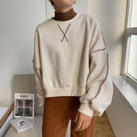《予約販売》stitch minimal mtm/3colors_nt0737