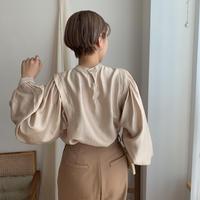 ✳︎予約販売✳︎puff sleeve blouse/2colors_nt0269