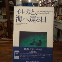 【古本】イルカと、海へ還る日