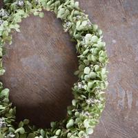 野の花屋 アナベルのオーバルリース
