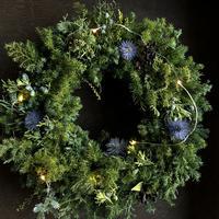 クリスマスグリーンイルミリース