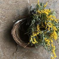 野の花屋 ミモザのハーフリース