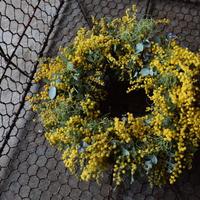 野の花屋 mimoza wreath