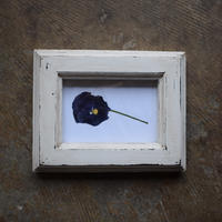 野の花屋 buchi mokkou    frame  white