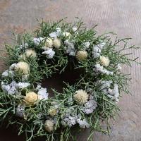 野の花屋 ホワイトクリスマス リース