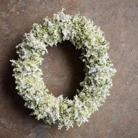 野の花屋 スターチスのオーバルリース