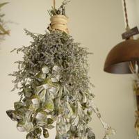 野の花屋  ユーカリ テトラゴナナッツのフライングスワッグ