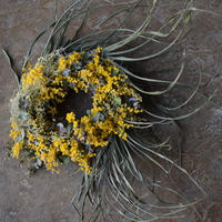 野の花屋 ミモザとアレカヤシのドライリース