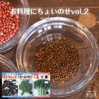 お料理にちょいのせセットvol.2(しそ/パセリ/みつば) / 送料込 種セット 21g ギフト